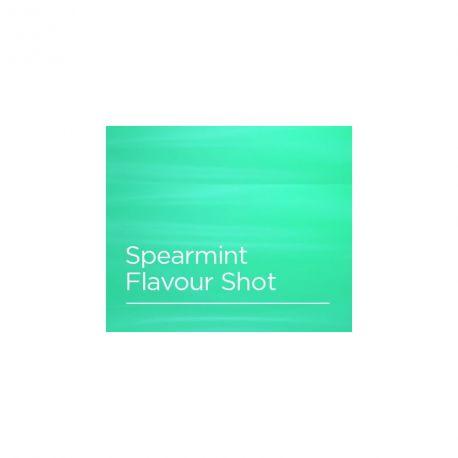 Arôme Spearmint